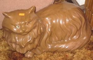 Persian Crazy Cat