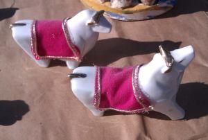 Albino Bulls