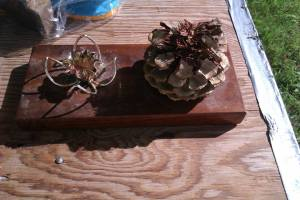 Christmas pinecone and candle2