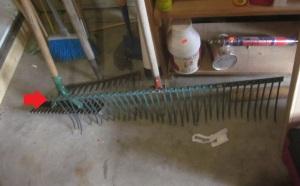 Perhaps the biggest rake ever!