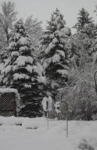 Snowy Spring 2016