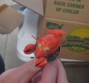 Crabby shell magnet