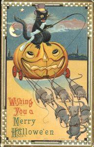 cat-driving-a-pumpkin-coach