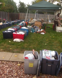 crazy-backyard-sale