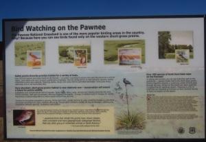 birdwatching-on-the-pawnee